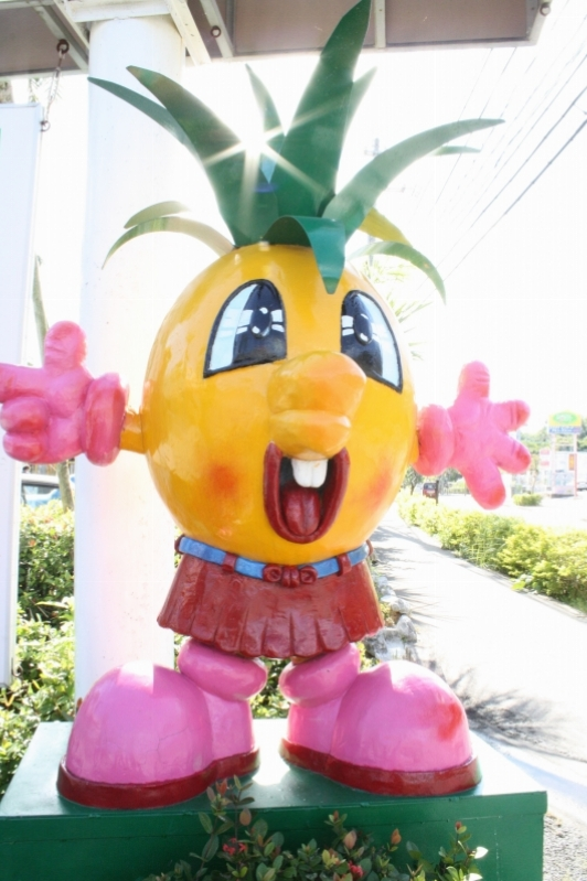 Pineapple Farm, Okinawa, Japan