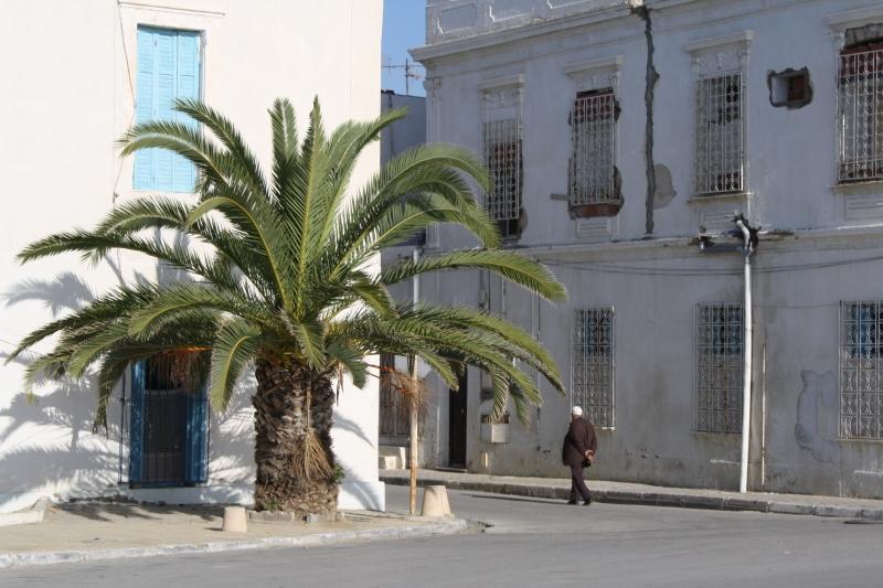 Tunis, Tunisia, Africa
